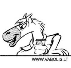 small horse avatar